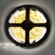 LED-лента на катушке ТМ Ecola